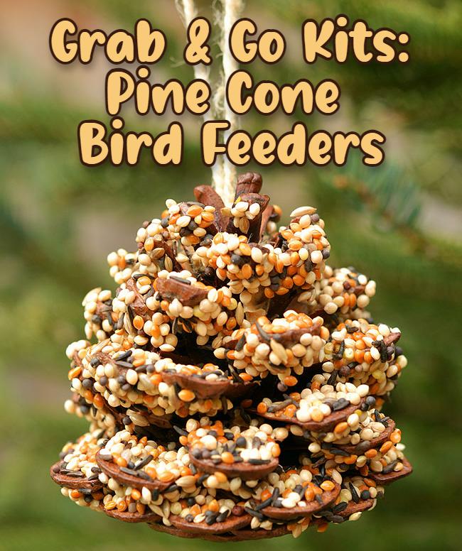 Grab & Go Kits: Pine Cone Bird Feeders