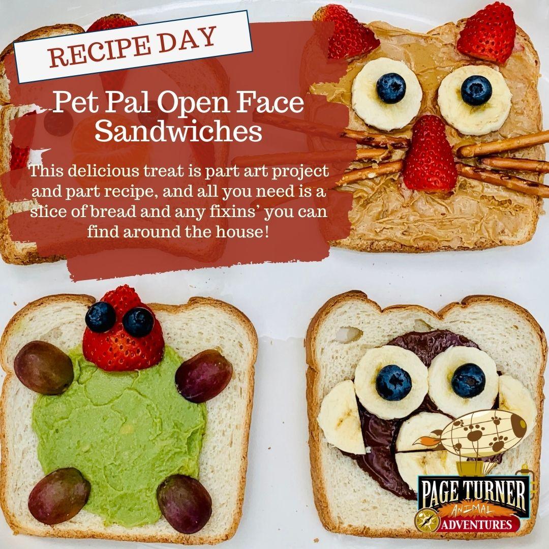 (Virtual) PTA: Recipe Day: Pet Pal Sandwiches