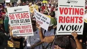 Virtual Program: Voter Suppression